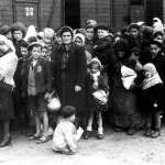連二戰勇猛的蘇軍,也被滿坑滿谷的屍體嚇壞!納粹集中營倖存者淚憶「被解放的那天」