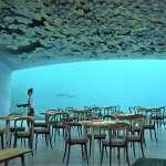 歐洲第一座「海底餐廳」將開幕!無敵海景、最強菜色搶先看,連海洋生物學家都迫不及待