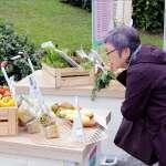 農委會優客里鄰輔導百位農友推動農產直銷  打造安心便利在地食材直販模式