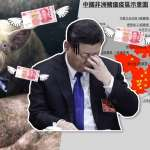【風云軍事】中國人真要吃草?豬瘟大噴發!強國面臨無豬可吃?從大量進口美豬見..大陸貿易戰敗相?