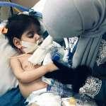 「跟我們的心肝寶貝、生命之光道別」這位母親為探望瀕死稚兒控告美國政府 獲准入境卻只換得10天相聚