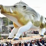 三重‧辰水神社供奉「巨無霸」山豬 全長4公尺華麗登場