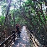 別再說新竹是景點沙漠啦!在地人公開5處「私藏口袋清單」,絕對讓你美照拍不完!