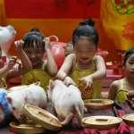 圖輯》豬豬大集合!迎接農曆豬年賀新春 全球喜孜孜