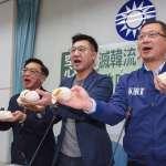 不惜形象拍影片、玩直播!藍委打新型態選戰樣樣來,盼複製韓流模式「豁出去、票進來」
