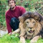 捷克一男子被自己養的寵物獅咬死,警方趕到後槍殺籠中獅