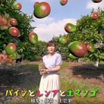 屏東真的好驕傲!燈會影片入選日本國際觀光影像節,高質感MV、詞曲竟是才女一人包辦!