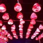 觀點迴響:台灣燈會我所見,一個屏東囡仔的告白