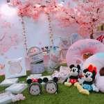 草衙道粉色浪漫來襲 多處粉嫩場景拍到手軟