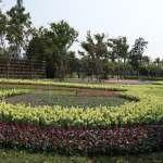 花博外埔園區花卉植栽花團錦簇 展現春天鮮綠氣息
