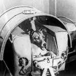 如果能自己決定,狗狗會想上火星嗎?從蘇聯「太空狗」的悲慘命運看人類的自私與殘忍