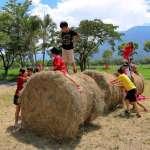 台東池上牧草季 體驗農業循環課程