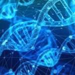 科學家再次扮演上帝!劍橋大學創造全球第一個「全人工基因編輯生物體」