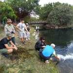 勘查中央公園景觀池 教授:無藻華及優養化