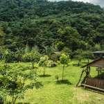 新北推「幸福德拉楠」主題遊程 體驗泰雅溪遊森活樂趣
