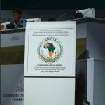 全球最大自貿區》13億人口、102兆經濟利益 非洲聯盟正式成立非洲自由貿易區AfCFTA