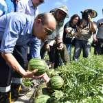 訪視豪雨農損 韓國瑜:盡速協助農民復耕
