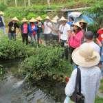 體驗農村小旅行 埔里三合一農村社區體驗