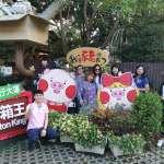 行銷臺中 東南亞遊客泰國佔第二位