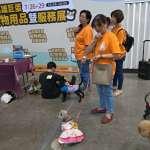 巨蛋寵物用品展登場 打造「寵物水樂園」避暑新天地