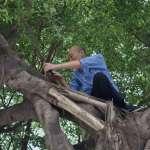 政大學生會長新訓秀「韓國瑜爬樹照」 校方:尊重學生言論自由