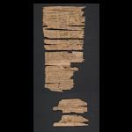 樺樹皮千年手抄本,一窺佛教早期發展史!美國國會圖書館公開「犍陀羅國卷軸」