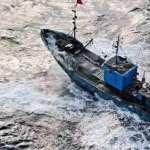 33船員出海打拼,回來的卻是11個殺人犯!一場太平洋絕海大逃殺,道出血汗漁工相殘悲歌