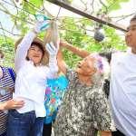 94歲阿嬤與小孩同經營開心農場 中市全國首創老少共學
