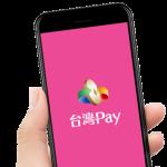 陳椒華觀點:「台灣pay」成「公股銀行pay」?
