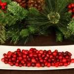 蔓越莓的功效與好處有哪些?營養師帶你3分鐘搞懂四大觀念,保養推薦吃法大揭密!