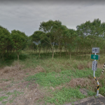平地森林若發展「營農型」光電設施?林務局:須退還造林補助款,對業主反而划不來