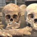 日本東奧主場館挖出上百副骸骨 意外揭開300年前家暴事件