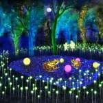 2020台灣燈會里山禾樂燈區 邀國內外藝術家與在地農村共同創作