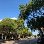 台中空氣變好了!學者秀極美藍天街景照:常態性減排後空氣乾淨很多