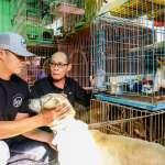 棒球》前進徐春水狗園 陳偉殷呼籲社會重視流浪動物議題