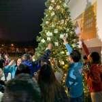 蔡英文高雄競總護台聖誕樹點燈 管碧玲:望高雄成為台灣的根