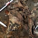 《神力女超人》原型找到了!古希臘史詩「亞馬遜族」不是杜撰 最新考古發現2500年前剽悍女戰士