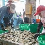 2020主推蚵仔寮漁村小旅行 讓國際旅客耳目一新