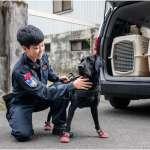 憲兵首個「緝毒犬分組」成軍 女領犬員大有來頭:感謝軍犬夥伴支持