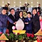 台灣燈會揭幕 蔡英文親手點亮「光之樹」