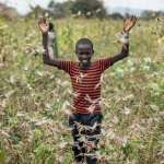 70年來最大蟲蟲危機》氣候變遷導致蝗災加據 橫掃東非蝗蟲數量6月恐增500倍