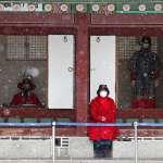 武漢肺炎風暴》南韓疫情延燒!國會提案:物資不足時可禁口罩、消毒液出口