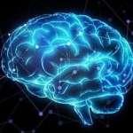 我們的貝氏大腦:《骰子能扮演上帝嗎》選摘(2)