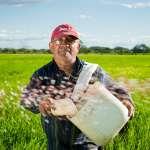 從心開始改變,一杯有機茶的故事:《農產加工不止醬》選摘(3)