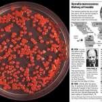 美軍曾對自己人做生化武器實驗!7天感染整個舊金山,老翁「尿變詭異紅色」不治身亡