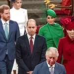 威廉王子不喜梅根,稱她為「那個女的」!哈利夫婦「自傳」新書揭英國王室震撼內幕