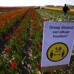新冠肺炎》不要把人民當小孩子管!荷蘭的大膽防疫策略:智慧封鎖+群體免疫