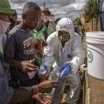非洲人的尊嚴與榮耀?馬達加斯加總統推銷藥草茶「能治新冠肺炎」大熱銷,WHO警告「做臨床實驗前別喝」
