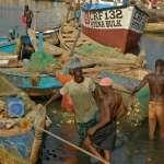 非洲迦納驚現「超級毒王」1人傳染533人!魚品加工廠爆大規模群聚