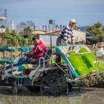 農委會擴大紓困補貼  協助農漁民渡過疫情難關